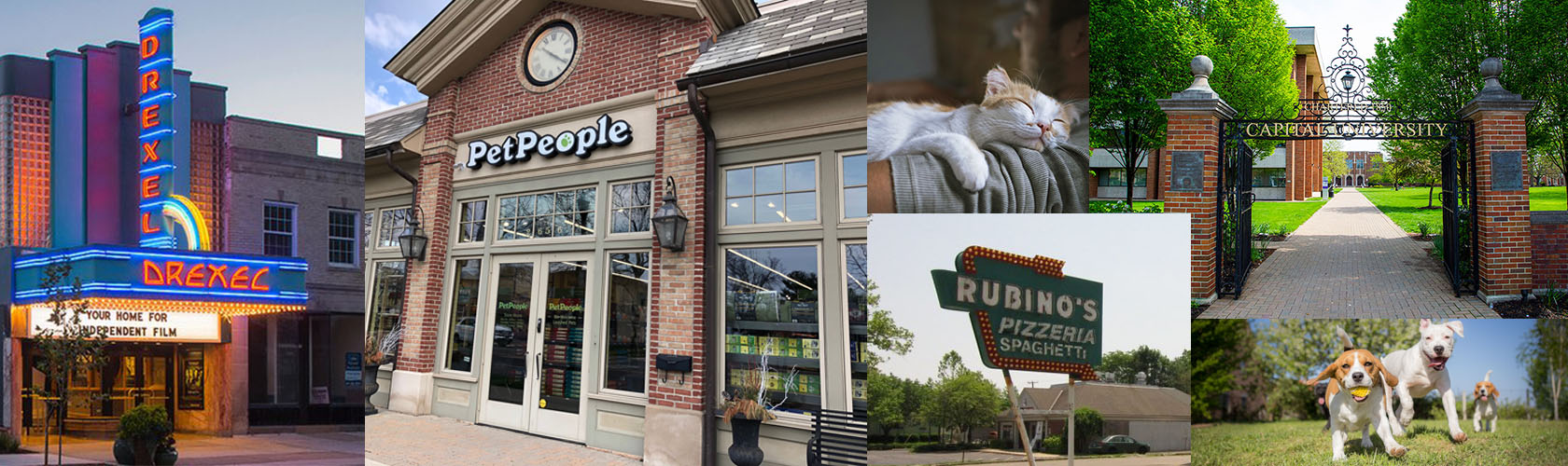 Pet People store collage in Bexely