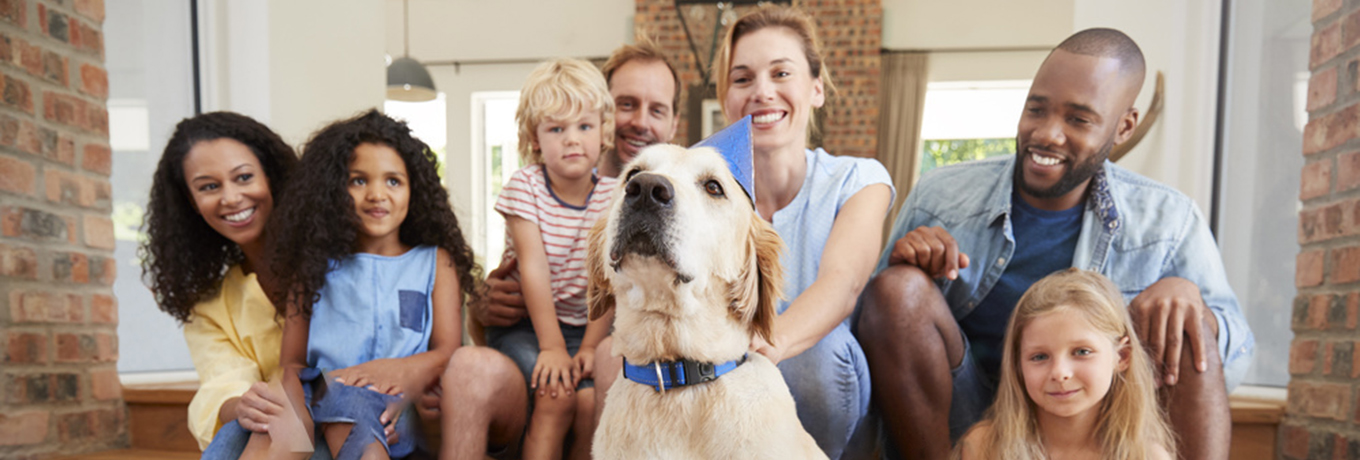 Large family with golden dog in a blue collar and party hat